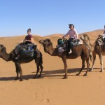 camel trekking merzouga desert tours morocco