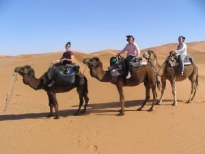 merzouga tours camel trekking morocco,erg chebbi camel trekking,desert tours merzouga, 2251966901_c876c7819d_b-300x225